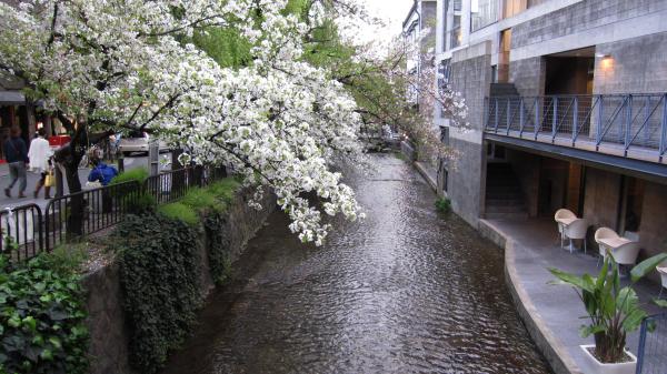 高瀬川.jpg