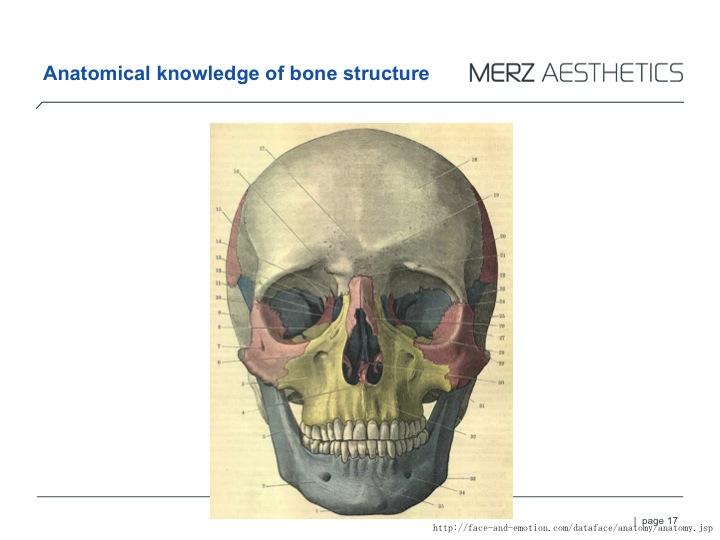 RAD bone.jpg