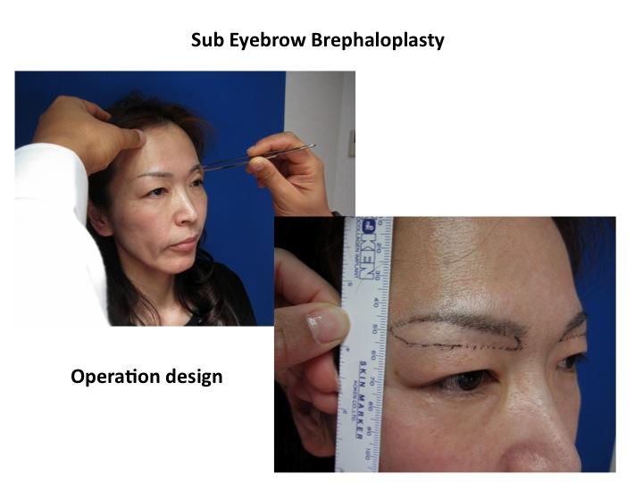 SEBBP hisako PP slide3.jpg